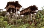 architektura v Indonésii